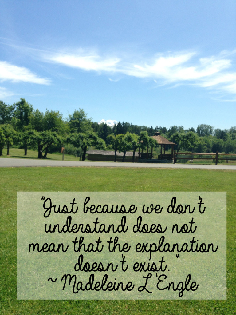 """""""Just because we don't understand does not mean that the explanation doesn't exist."""" ~ Madeleine L'Engle // stephanieorefice.net"""