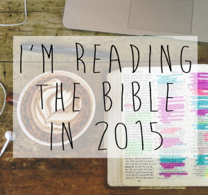 Reading through the Bible in 2015 // stephanieorefice.net