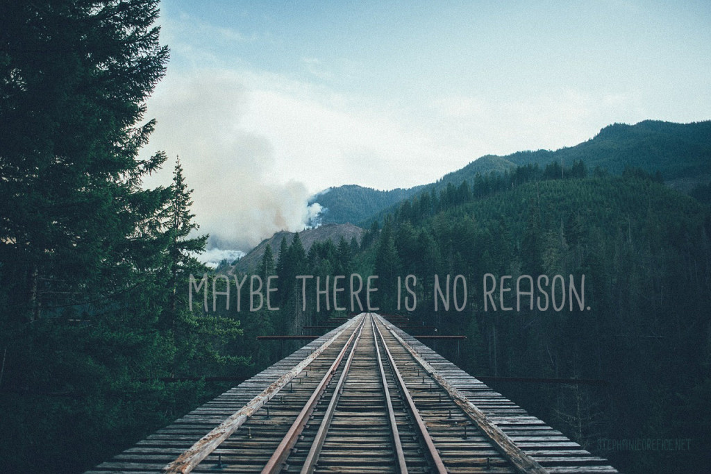 Maybe there is no reason // stephanieorefice.net