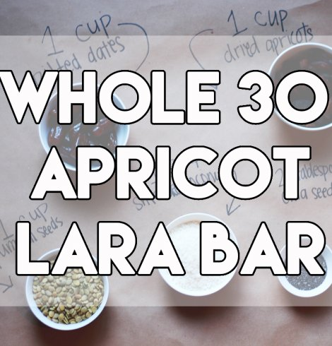 Whole 30 compliant homemade apricot lara bars