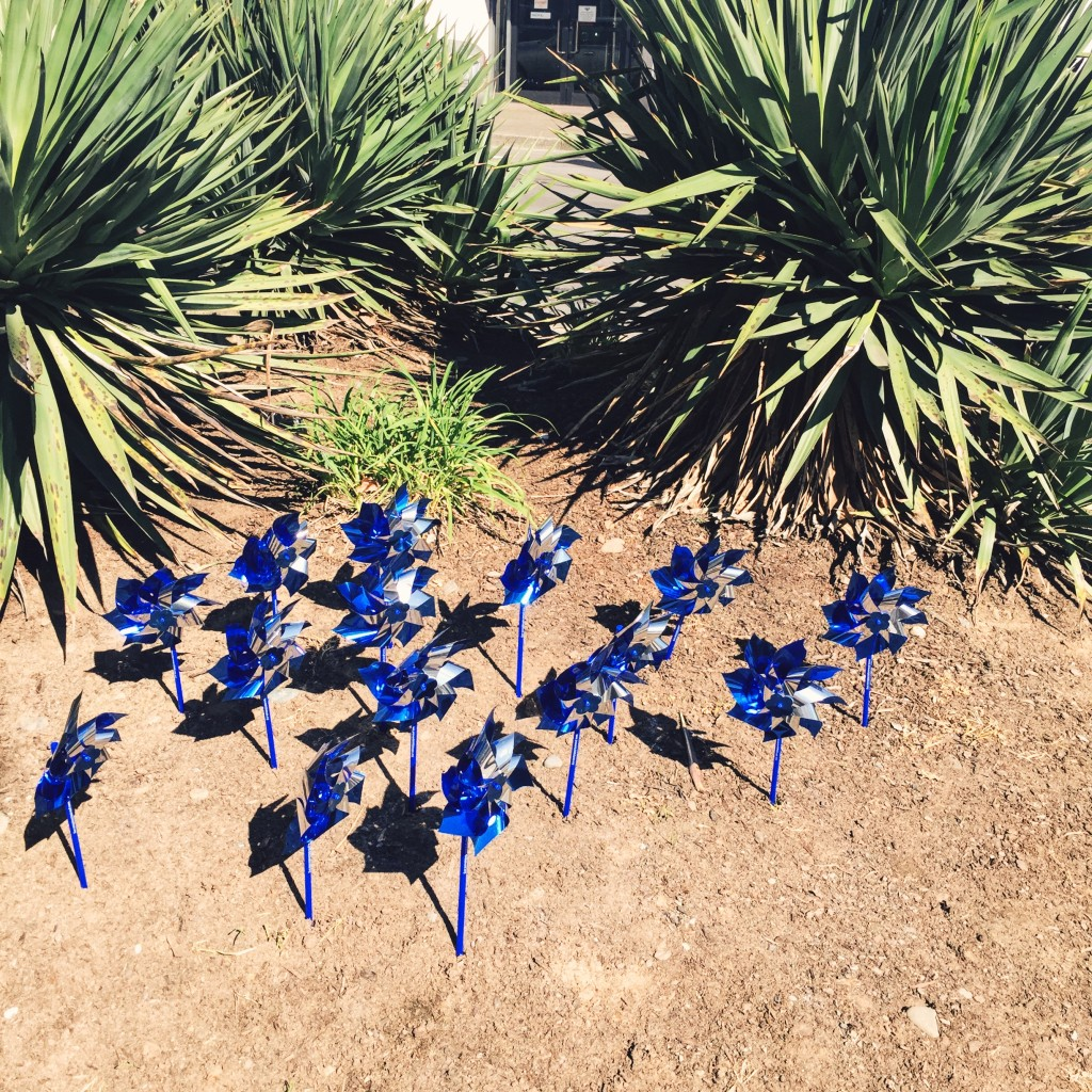 pinwheels in downtown vancouver washington // stephanieorefice.net