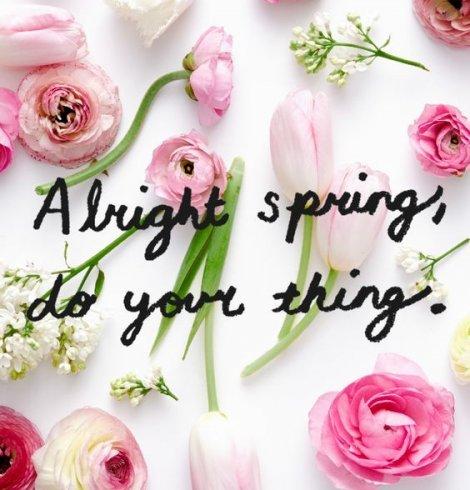 Thank you, Spring.